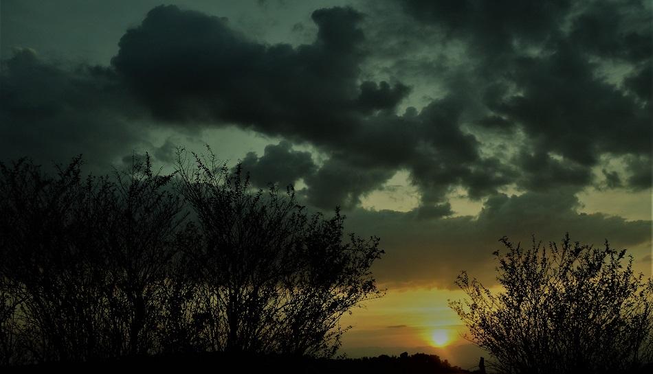 ನೀನೊಂದು ಅಲುಗಾಡದ ಗೊಂಬೆಯ ಹಾಗೆ: ನಕ್ಷತ್ರ ಬರೆದ ದಿನದ ಕವಿತೆ