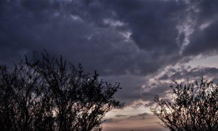 ನೀನು ಎಂದರೆ ಏನು ನನಗೆ?:ನಕ್ಷತ್ರ ಬರೆದ ದಿನದ ಕವಿತೆ