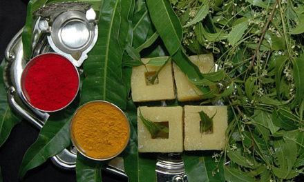 ಉಗಾದಿ ವಿಶೇಷ: ಮಾವಿನಕಾಯಿ ಚಿತ್ತ್ರಾನ್ನ