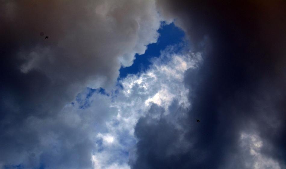 ಕವಿ ಹೃದಯ ಮತ್ತು ಕಾಡುಹಂದಿ: ಅಬ್ದುಲ್ ರಶೀದ್ ಅಂಕಣ
