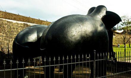 ರಾಜರ ಕಾಲದ ಬ್ರಾಯ್ಲರ್ ಕೋಳಿ: ಅಬ್ದುಲ್ ರಶೀದ್ ಅಂಕಣ