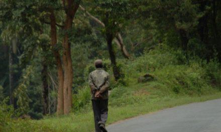 ತೀರಿಹೋದ ಜೀವವೊಂದರ ದೇವಸೌಂದರ್ಯ: ಅಬ್ದುಲ್ ರಶೀದ್ ಅಂಕಣ