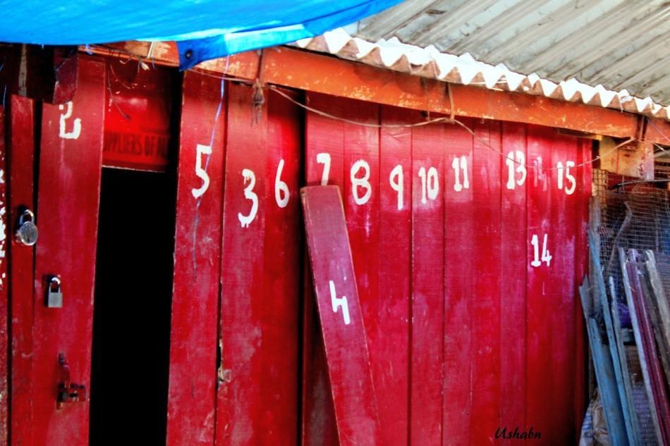 ಉಷಾ ಬಿ.ಎನ್. ತೆಗೆದ ಲೆಕ್ಕಾಚಾರದ ಬಾಗಿಲುಗಳು