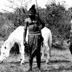 ಜಿ. ಅರವಿಂದನ್ ಸಿನೆಮಾ 'ಕಾಂಚನ ಸೀತಾ' ಕುರಿತು ಕೆಲವು ಟಿಪ್ಪಣಿಗಳು