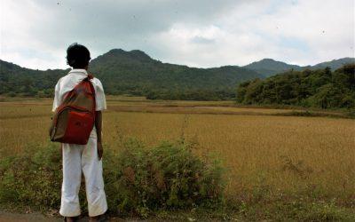 ಮಾವಿನ ಮರದ ಬ್ರಹ್ಮರಾಕ್ಷಸ:ಮುನವ್ವರ್ ಬರೆಯುವ ಪರಿಸರದ ಕಥೆಗಳು