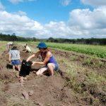 ಆಸ್ಟ್ರೇಲಿಯಾದಲ್ಲಿ ಸಾವಯವ ಆಹಾರ:ವಿನತೆ ಶರ್ಮಾ ಅಂಕಣ