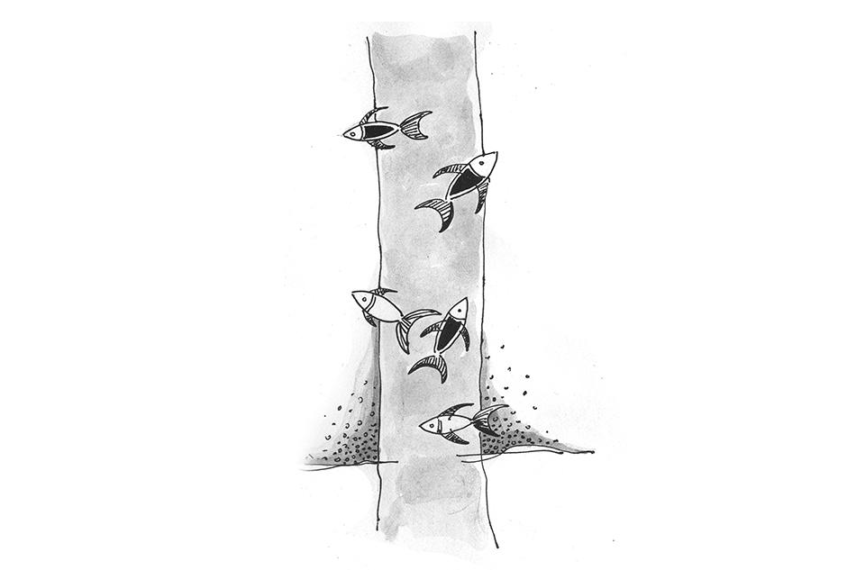 ಮಹಾಂತೇಶ್ ಆಧುನಿಕ್ ಬರೆದ ದಿನದ ಕವಿತೆ