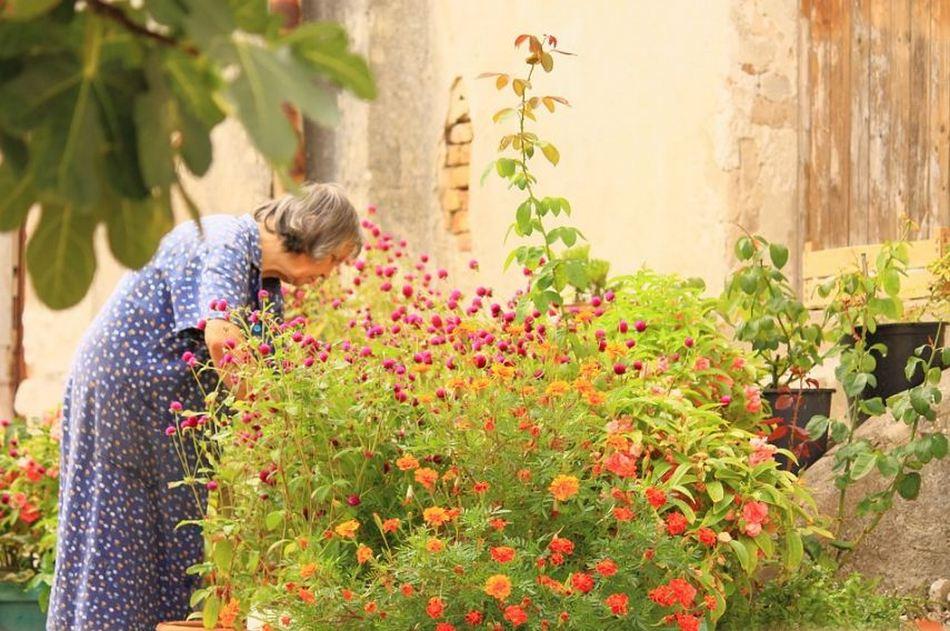 ವಲಸಿಗರ ಪರದೇಶಿತನದಲ್ಲೂ ಇರೋ ಆಸೆಗಳು: ಡಾ. ವಿನತೆ ಶರ್ಮಾ ಅಂಕಣ.