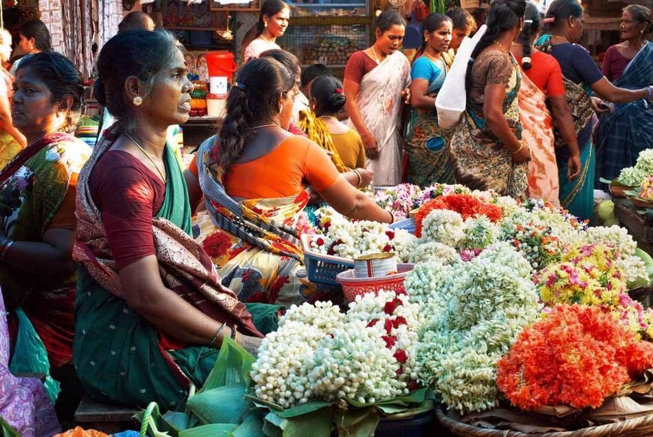 ಸರ್ವೇಜನ ಸುಖೀನೋ ಭವಂತು….: ಲಕ್ಷ್ಮಣ ವಿ.ಎ. ಅಂಕಣ