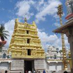 ಕನಕಗಿರಿಯ ಲಕ್ಷ್ಮೀನರಸಿಂಹ ದೇವಾಲಯ: ಟಿ.ಎಸ್. ಗೋಪಾಲ್ ಬರೆಯುವ ದೇಗುಲಗಳ ಸರಣಿ