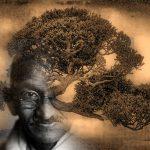 ಹಂದಲಗೆರೆ ಗಿರೀಶ್ ಬರೆದ ಈ ದಿನದ ಕವಿತೆ: ಗಾಂಧಿ ಗಿಡ