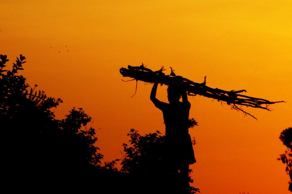 ಸಂಪತ್ ಕುಮಾರ್ ದುರ್ಗೋಜಿ ತೆಗೆದ ಈ ದಿನದ ಫೋಟೋ